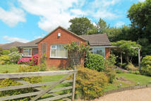 3 bed Bungalow for sale in Westfield