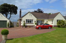 3 bed Detached Bungalow in Cowbridge Road...