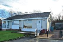 2 bedroom Semi-Detached Bungalow for sale in Portreath Road...