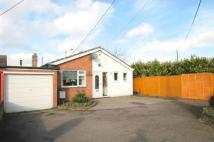 3 bed Bungalow in Breach Lane...