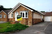 Detached Bungalow to rent in Marks Drive, Bodmin