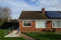 Semi-Detached Bungalow to rent in Cypress Close...