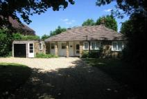 LITTLE Detached Bungalow to rent