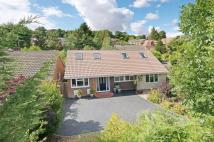 Detached property for sale in Springvale Road...