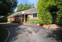 Bungalow for sale in Boyne Rise, Kings Worthy...