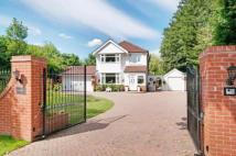 3 bed Detached house for sale in Tilden Road, Compton...