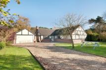 4 bed Bungalow in Drove Road, Chilbolton...