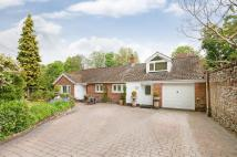 Bungalow for sale in Roman Road, Twyford...