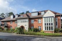 Queens Lodge Flat to rent