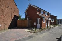 1 bed semi detached home to rent in Lupin Drive, Chelmsford
