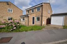 4 bed Detached home to rent in Daffodil Way, Chelmsford