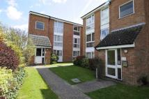 Flat to rent in Hogarth Court, Chelmsford