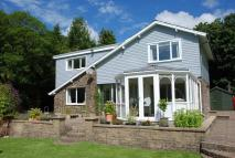 Llanllawddog Detached property for sale