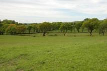 Lampeter Farm Land for sale