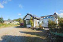 Detached Bungalow for sale in Willow Hill SA44 6LX