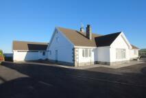 Detached Bungalow for sale in Llandysul...