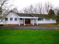 Detached Bungalow to rent in Hillock Lane, Warton, PR4