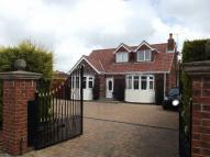 Detached Bungalow for sale in Charles Street, Hedon...
