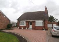 Sproatley Road Detached Bungalow for sale