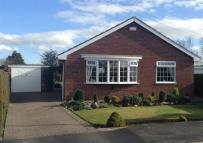3 bed Detached Bungalow in Addison Road, Preston