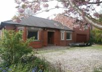 Detached Bungalow in Church Lane, Thorngumbald