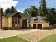 6 bed Detached house to rent in Tinacre Hill...