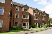 Retirement Property to rent in Beechwood Court...