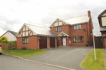 4 bedroom Detached house for sale in Naylor Fields, Arddleen