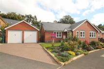 2 bedroom Detached Bungalow for sale in Maes Myllin, Llanfyllin