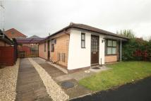 2 bedroom Detached Bungalow to rent in Ambleside Road, Oswestry