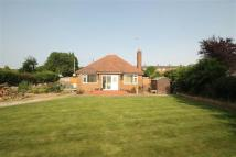 Detached Bungalow for sale in Chapel Lane, Chirk