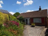 Detached Bungalow for sale in Portman Road, Pimperne...