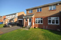 3 bed semi detached home to rent in Dalwhinnie Crescent...