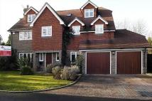6 bedroom Detached house to rent in Ruxley Heights, Claygate