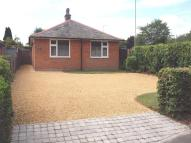 Detached Bungalow in Basingstoke, Hampshire