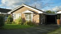 Detached Bungalow to rent in Mardale Court...