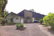 4 bedroom Detached Bungalow for sale in Manor Court, Crewe...