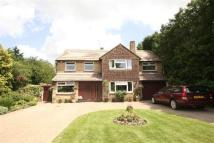 Detached home to rent in Homefield Road, Radlett...