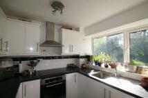 Ashdown Drive Apartment to rent