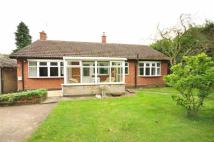 3 bed Detached Bungalow in Papplewick Lane, Hucknall