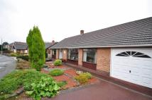 Detached Bungalow for sale in Drummond Drive, Nuthall