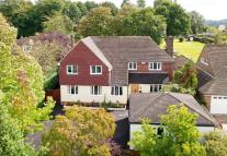 Detached property for sale in Forest Road...