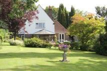 WADHURST ROAD Detached house for sale