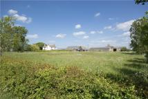 West Sunderland Farm Land for sale