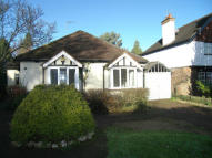 3 bed Detached Bungalow to rent in Bullfinch Lane, Sevenoaks
