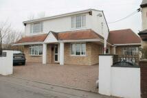 4 bedroom Detached property for sale in Ty Gwyn Pantybrad...