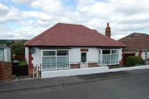 Bungalow in East Law, County Durham...