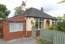 Bungalow for sale in Buxton Road, Congleton...