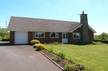 Bungalow for sale in Werrington
