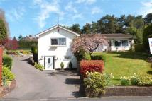 5 bed Bungalow for sale in Birchall Close, Birchall...
